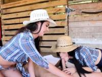Thai ladygirl orgy Farm Girls