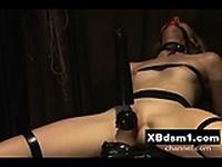 Busty Hot Gal Bondage Pain